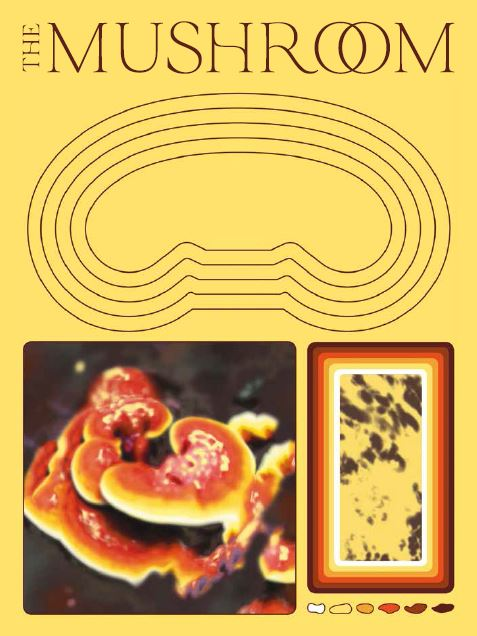 the front cover of the mushroom magazine issue one